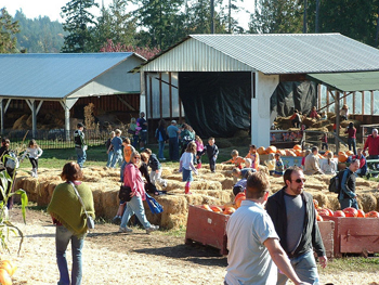 Pumpkinfest - Image Credit: https://www.flickr.com/photos/nessman/291791512